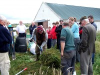 A successful composting demonstration was organised by the environmental group, Meas, with the support of Na Tithe Gloine on 12th July 2008 in Cill Ulta, An Fál Carrach. Pictured is Conor O'Kane giving the demonstration.